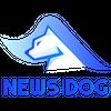 뉴스독벤쳐스 logo