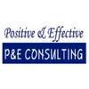 피앤이컨설팅 logo